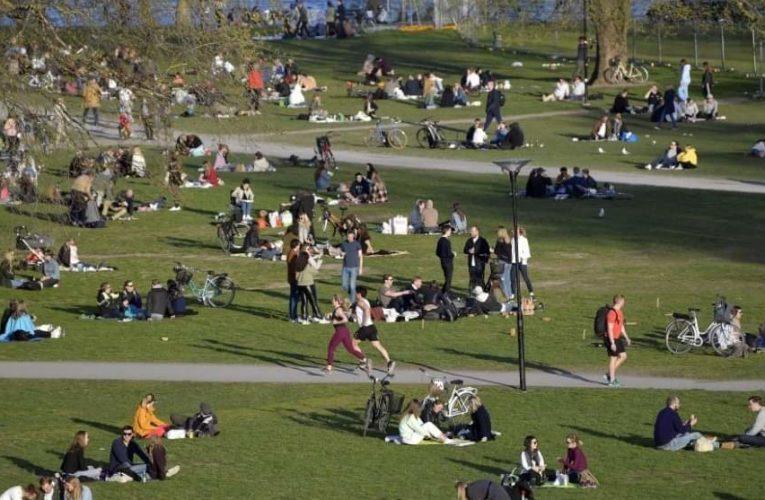 """La OMS y Suecia no recomiendan la """"inmunidad de grupo"""" para superar COVID-19😷"""